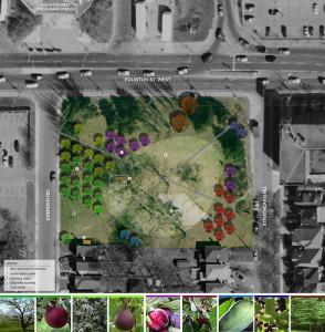 Ben Nobleman Community Urban Orchard plan